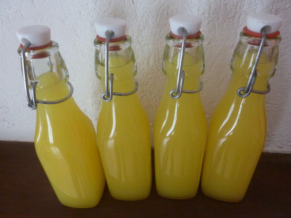 Limoncello les recettes de pierrette for Alcool maison fabrication